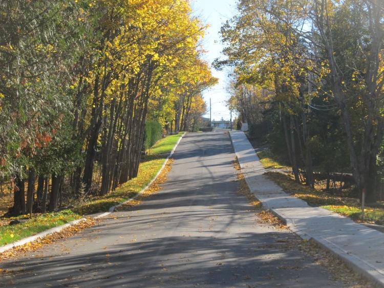 Green Road Finished Nov 4 2014