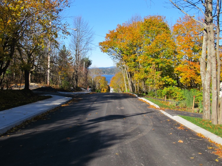Green Road Finished Trees Preserved Nov 4 2014