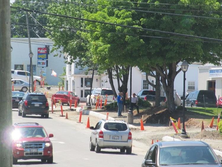 Hampton Road Preserving 3 Mature Trees